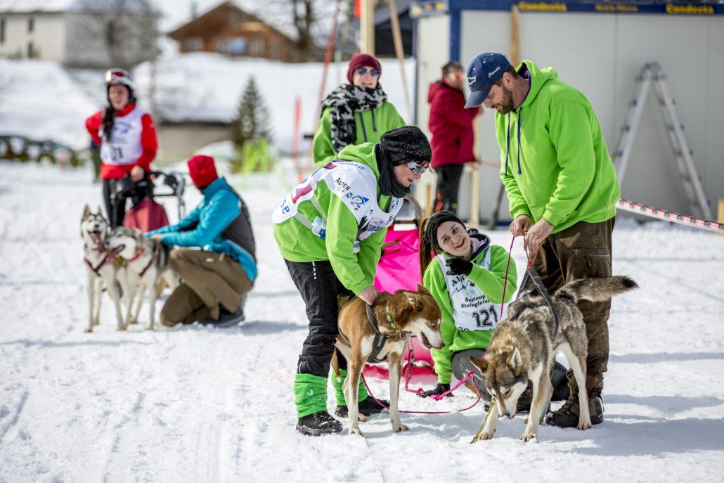 Schlittenhunderennen 2016 by David Birri